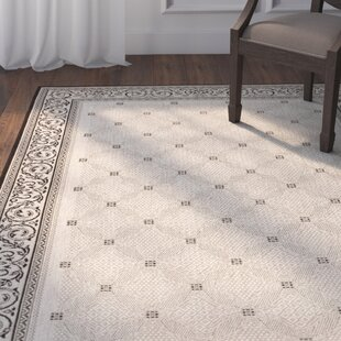 Beasley Ivory/Black Border Indoor/Outdoor Area Rug