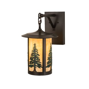 Etonbury Pines Outdoor Wall Lantern by Mi..