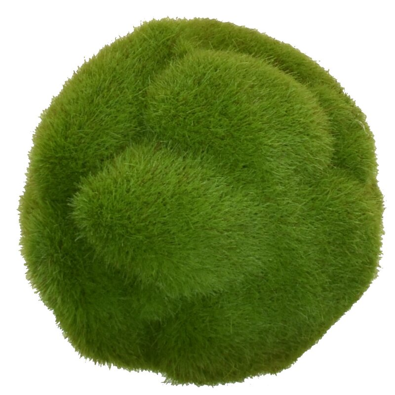 Bungalow Rose Mood Ball Faux Moss Plant Reviews Wayfair