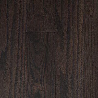 "Reykjavik 5"" Engineered Oak Hardwood Flooring Branton Flooring Collection Finish: Dark Chocolate"