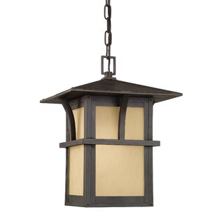 Darby Home Co Bush Creek 1-Light Outdoor Pendant
