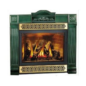 Direct Vent Wall Mount Gas Fireplace by Napoleon