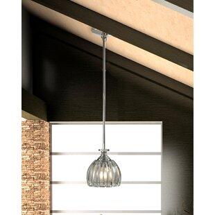 House of Hampton Duncan 1-Light Mini Pendant