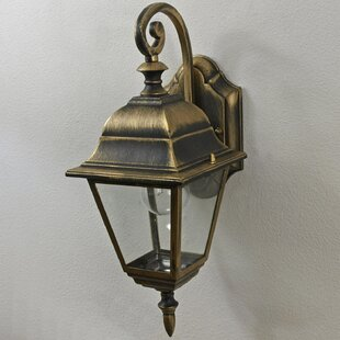Mayra Outdoor Wall Lantern Image