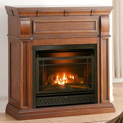 Heating Vent Free Propane/Natural Gas Fireplace Insert ProCom
