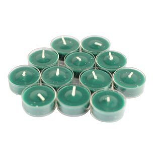 Scented Fresh Frasier Fir Tea Light Candle (Set of 12)