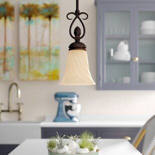 Hoopeston 1-Light Cone Pendant by Darby Home Co