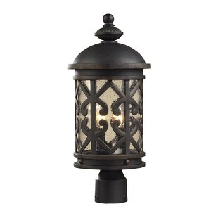 Robyn Outdoor 2-Light Post Light by Darby Home Co
