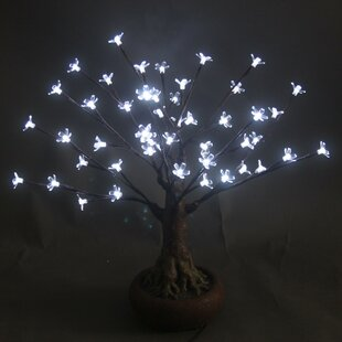 Hi-Line Gift Ltd. Bonsai Tree with 48 LED Lights