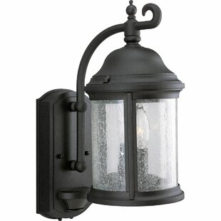 Alcott Hill Drumakeely 2-Light Outdoor Wall Lantern