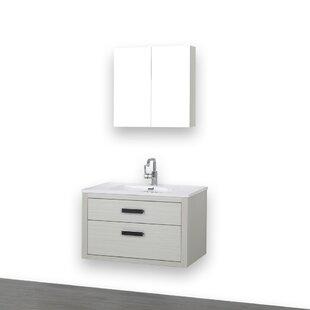 https://secure.img1-fg.wfcdn.com/im/17701704/resize-h310-w310%5Ecompr-r85/7108/71081314/32%2522+Wall-Mounted+Single+Bathroom+Vanity+Set+with+Mirror.jpg