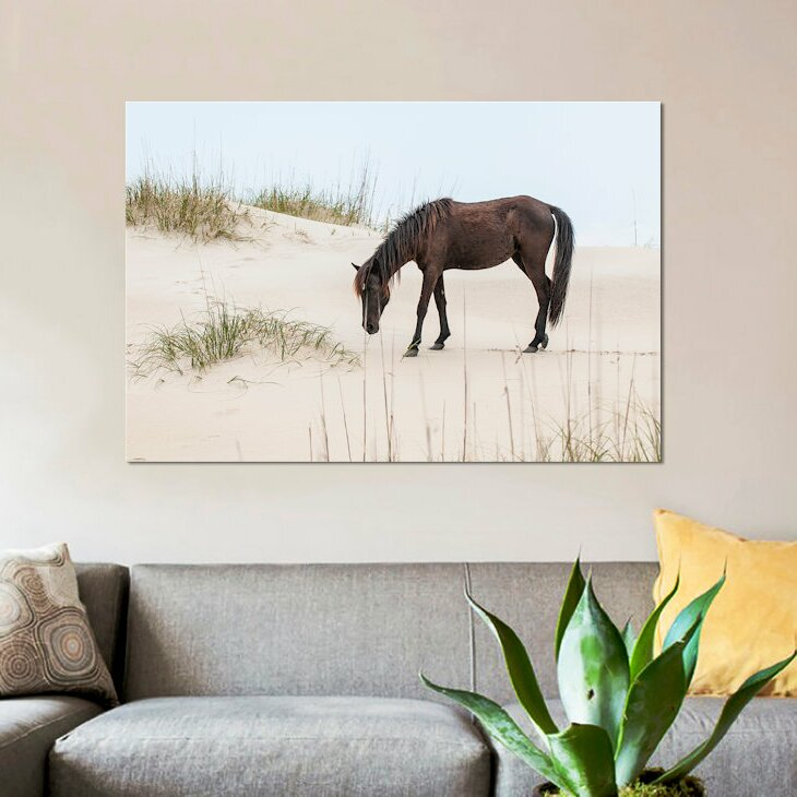 East Urban Home Lone Banker Horse On The Beach Photographic Print On Canvas Wayfair