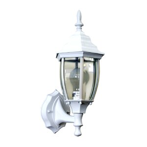 Nathan 1-Light Outdoor Sconce