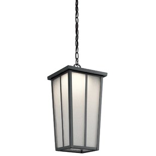 Reviews Inglesbatch 1-Light Outdoor Pendant By Brayden Studio
