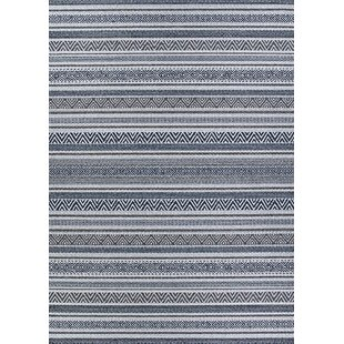 Amasa Gray Indoor/Outdoor Area Rug