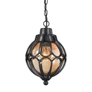 Colne 1-Light Outdoor Pendant by Charlton Home