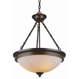 TransGlobe Lighting Olde W..