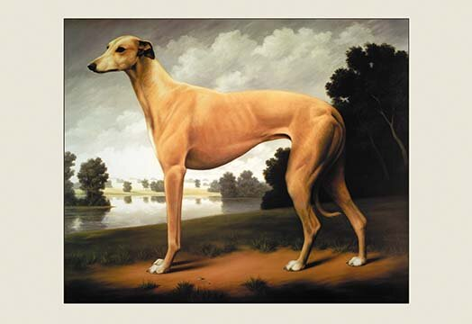Greyhound  Design Landscape Photo Picture Frame 7 x 5