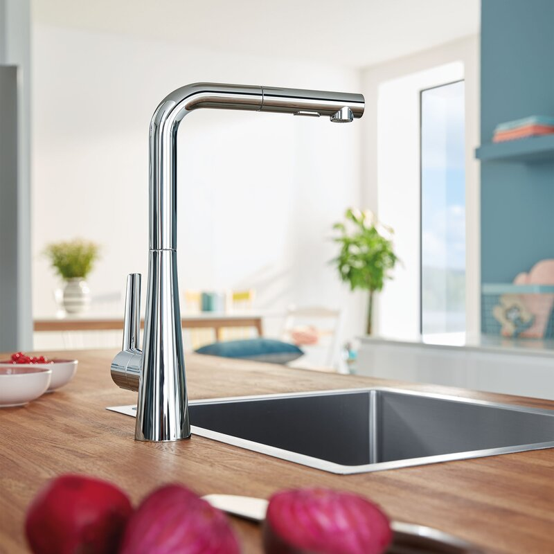 Grohe Ladylux L2 Single Handle Kitchen Faucet Wayfair