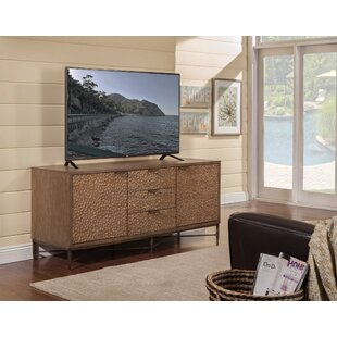 Biwabik TV Stand for TVs up to 60