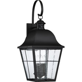Danielson 4-Light Outdoor Wall Lantern By Darby Home Co Outdoor Lighting