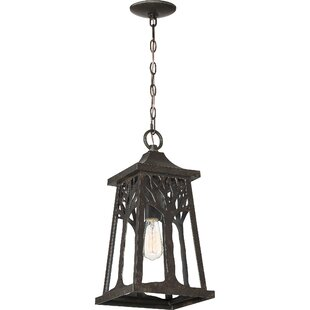 Millwood Pines Yeung 1-Light Outdoor Hanging Lantern