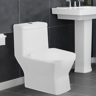 Potomac 1.28 GPF Elongated One-Piece Toilet (Seat Included) by Aqualife Corp
