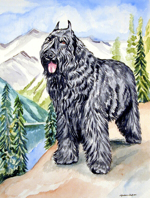 Caroline S Treasures Bouvier Des Flandres 2 Sided Polyester 40 X 28 In House Flag Wayfair