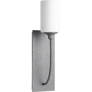 Dian Transitional 1-Light Outdoor Sconce