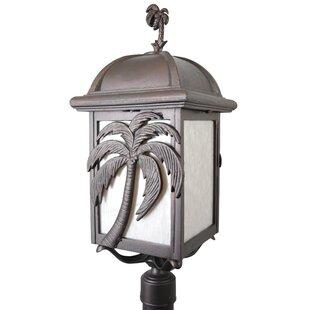 Alcott Hill Penfield Palm Tree Series 3-Light Lantern Head