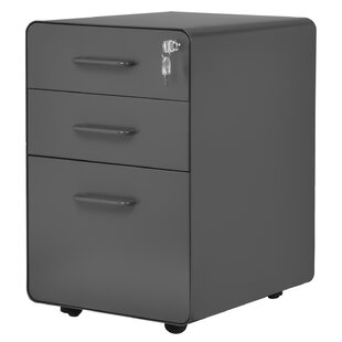 Jauregul 3 Drawer Filling Cabinet By Symple Stuff