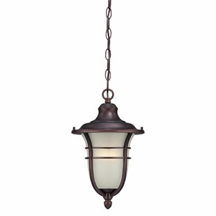 Fleur De Lis Living Berryhill 1-Light Outdoor Pendant