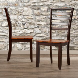 Hidalgo Solid Wood Dining Chair (Set of 2)
