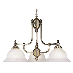 Top Reviews Brunette Contemporary 3-Light Shaded Chandelier By Alcott Hill