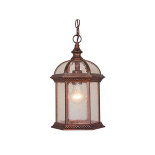 Fleur De Lis Living Brownfield 1-Light Outdoor Hanging lantern