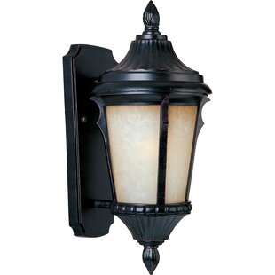 Easton 1-Light Outdoor Wall Lantern by Astoria Grand
