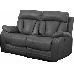 Benjamin Motion Reclining Loveseat