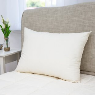 Trenton Plush Polyester and Polyfill Bed Pillow