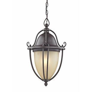 Charlton Home Greenhalge 1-Light Foyer Pendant