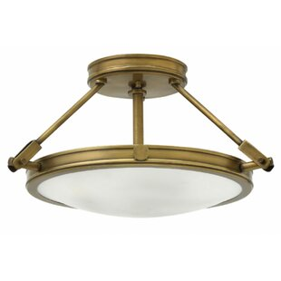 17 Stories Driden 3-Light Semi Flush Mount