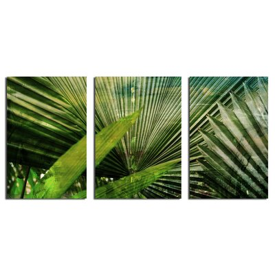 Bay Isle Home 'Green Palm' 3 Piece Graphic Art on Wrapped Canvas Set
