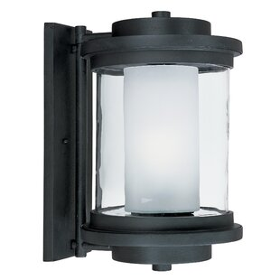 Brayden Studio Percival Outdoor Sconce