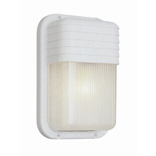 Dziedzic 1-Light Outdoor Flush Mount