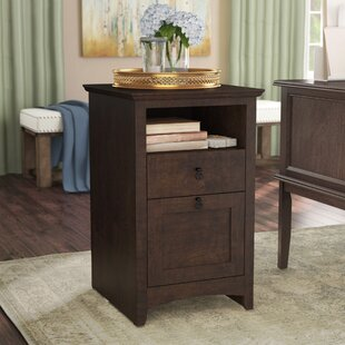 Darby Home Co Fralick 2-Drawer Vertical F..