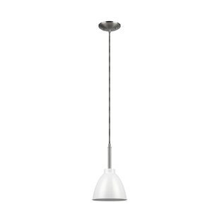 Globe Electric Company Rickon 1-Light Con..