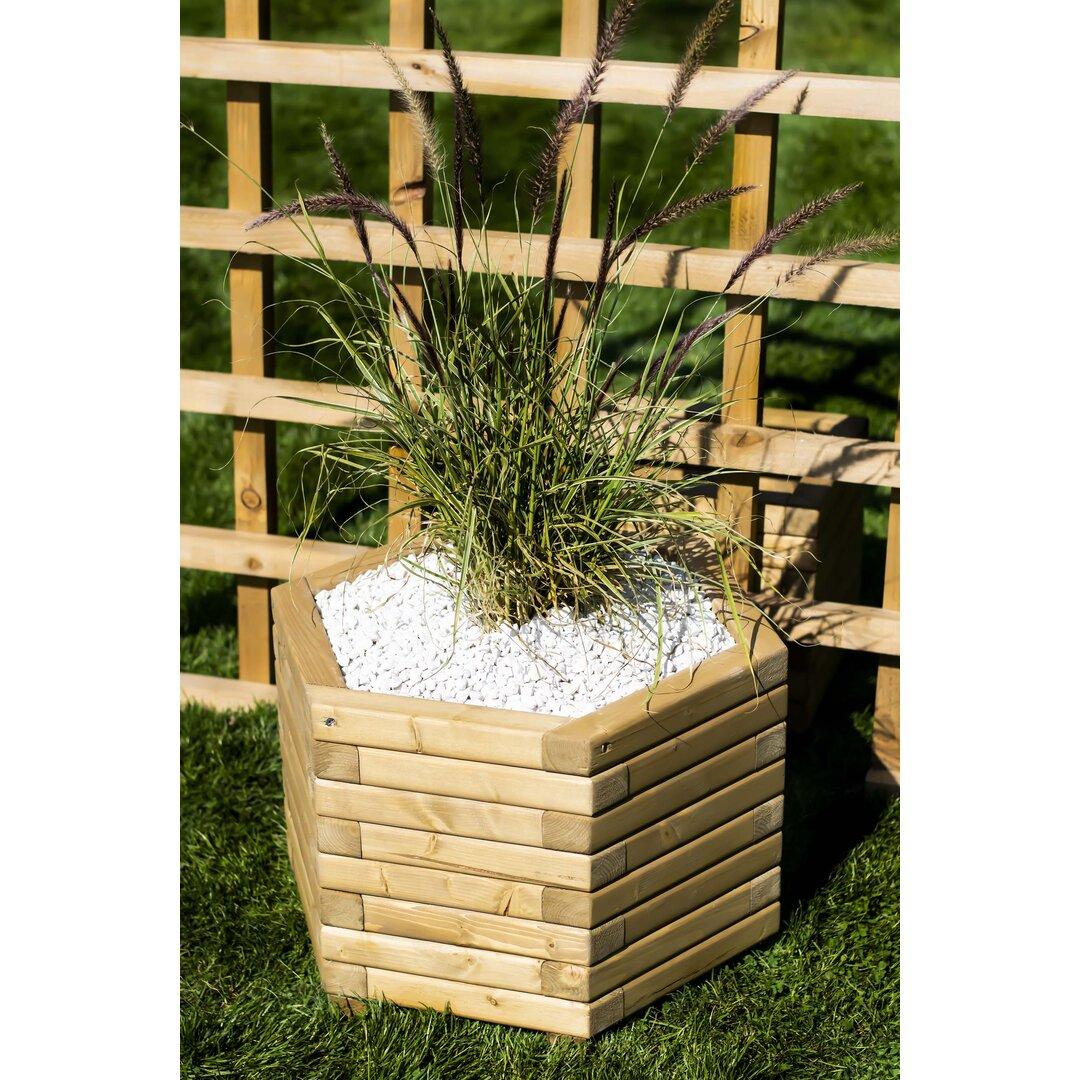 Buendia Wooden Planter Box