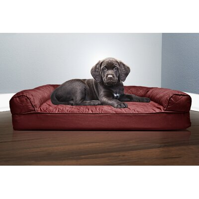 Medium Dog Beds You Ll Love In 2020 Wayfair