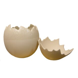 Egg Shell Chair | Wayfair