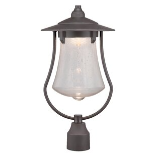 Priscila LED Lantern Head by Millwood Pines
