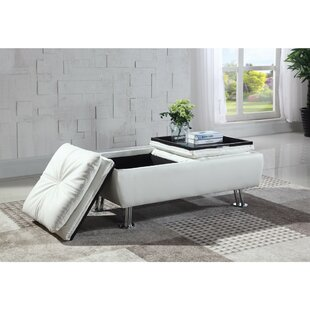 Dillup-Jones Storage Ottoman by Ebern Designs
